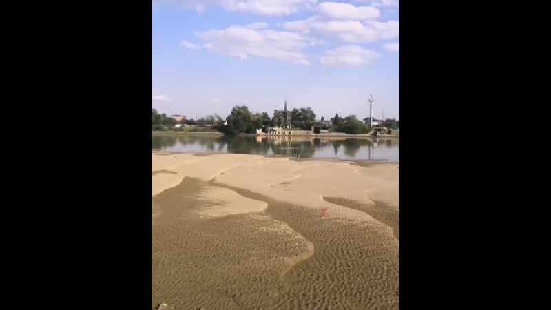 Фото реки цны обмелевшей видел соседа