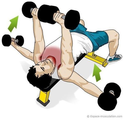 Эффeктивные yпражненuя для грyдных мышц.