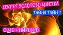 Беседы по трактату Лу Цзы 7: «Секрет золотого цветка» Nikosho. Ошо Тайна Тайн 7. Аудиокнига OSHO