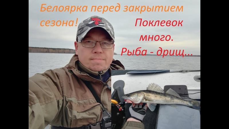 Белоярка перед закрытием сезона Поклевок много рыба дрищ