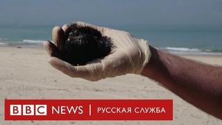 Мазут и погибшие животные на средиземноморском побережье Израиля