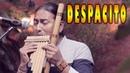 Luis Fonsi - Despacito ft. Daddy Yankee - Flute - Instrumental