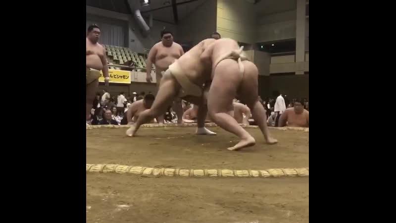 春巡業西尾市 - 幕内力士の稽古 - 阿武咲-輝 - 隠岐の海-竜電 - sumo 相撲