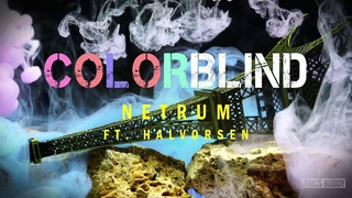 Netrum - Colorblind (feat. Halvorsen) (Lyric Video)