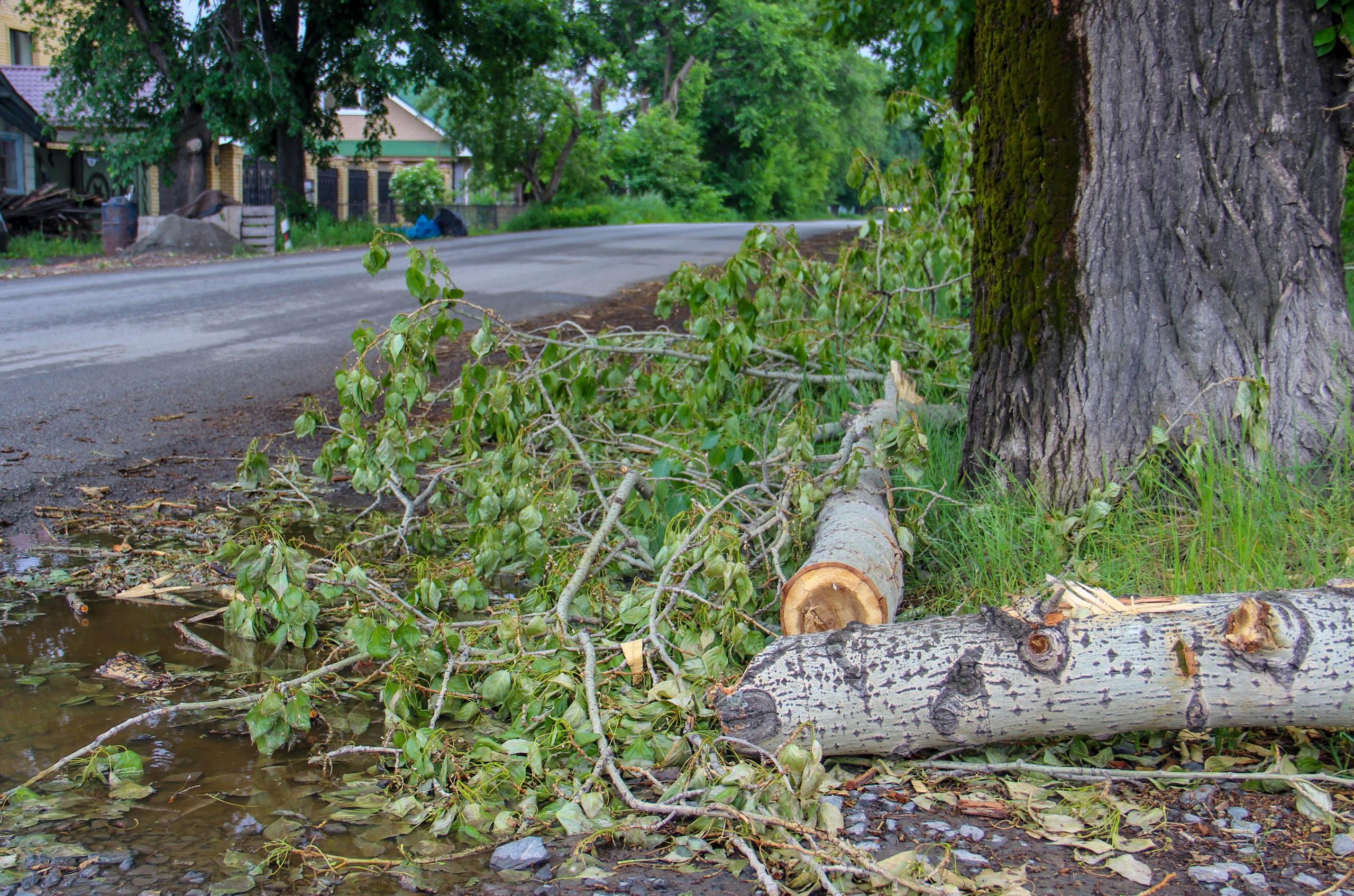 Последствия урагана в Арамили в начале улицы Октябрьской.