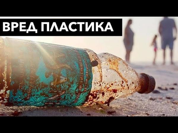 Вы едите пластик вред который наносит пластик пакеты бутылки мешочки и тд