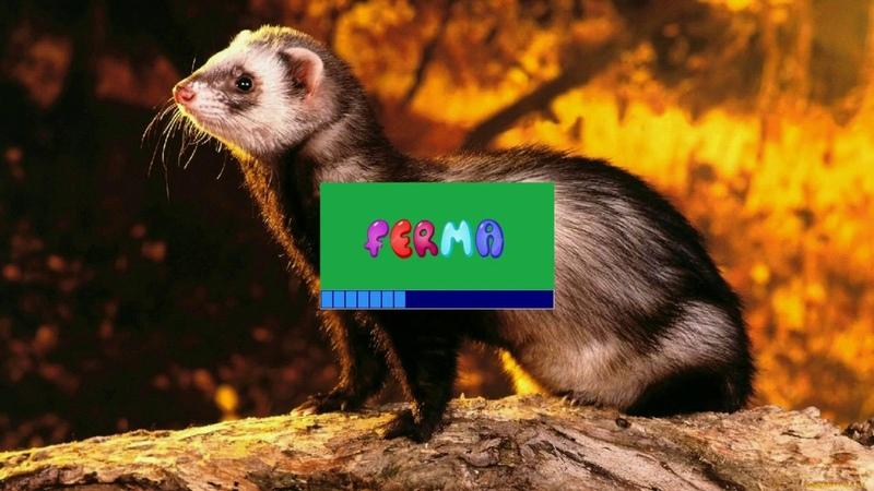 РАЗВЕДЕНИЕ ФРЕТОК Программа Ferma Выпуск 16