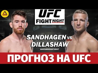 Разбор турнира UFC Fight Night: Sandhagen vs. Dillashaw