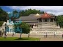 الجمال والراحة في نوراليا سريلانكا | Sri lanka Nuwara Eliya
