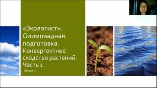 Подготовка к олимпиаде. Лекция 9. Конвергентное сходство растений. Часть 1.