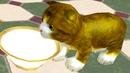 Приключение Странного КОТА 1 Кид накормил котика молоком в Virtual cat home Pet Adventure пурумчата