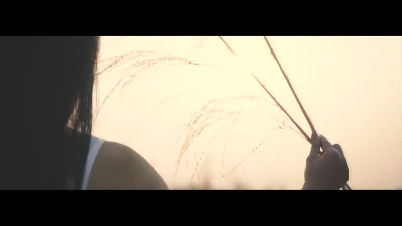 Michael Milov I Tried Music Video