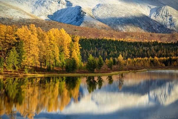 Золотая Осень моё излюбленное время года. Я бы даже сказала - возлюбленное.Больше всего в моей рабочей фото-коллекции конечно же осенних снимков. Именно в это время года я уделяю много времени