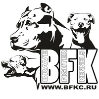 Логотип Питбули БРЭЙВ ФАЙТЕР * BRAVE FIGHTER'S pitbulls
