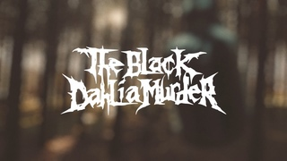 The Black Dahlia Murder - What a Horrible Night to Have a Curse || Cover by Yan Novikov