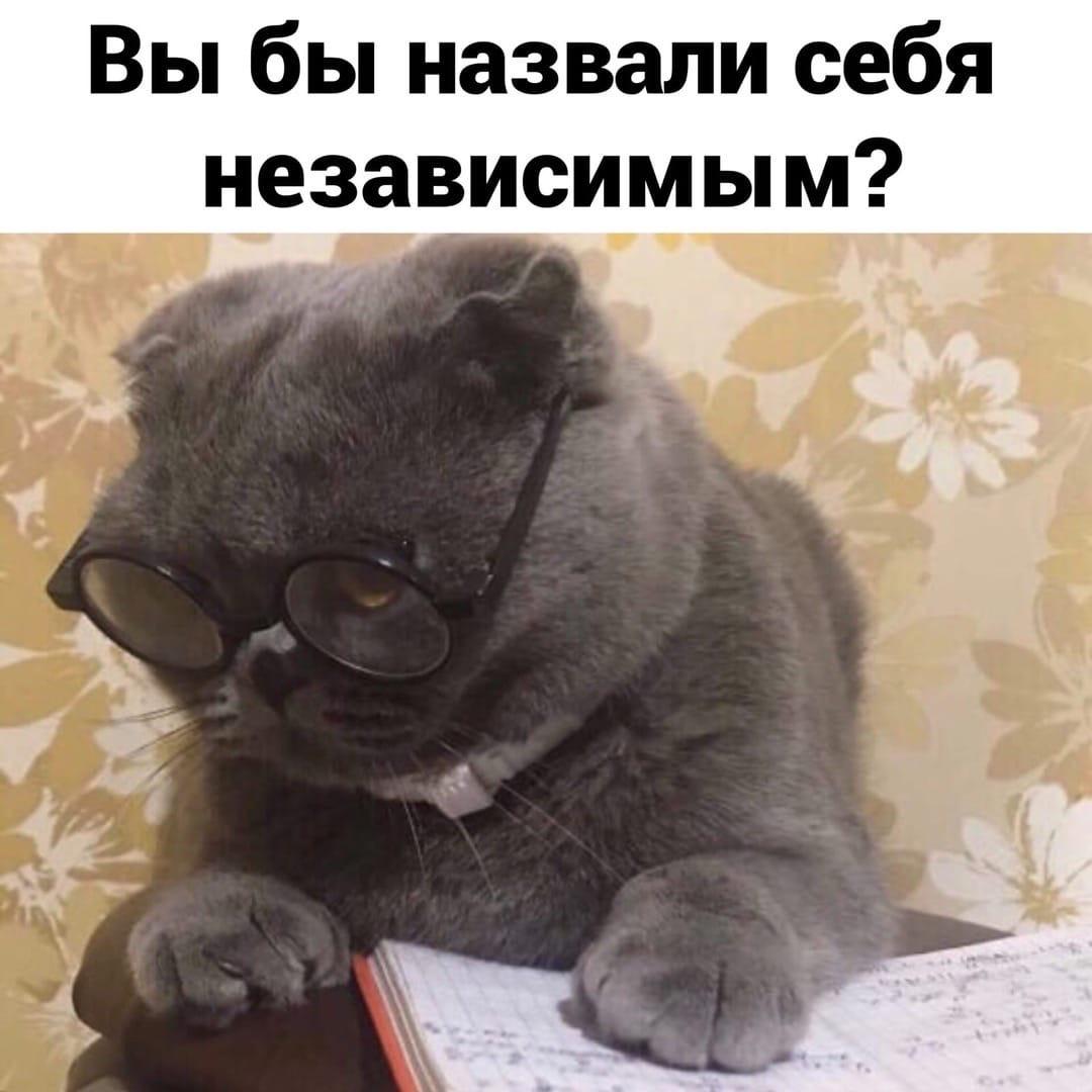 Самостоятельность она такая)