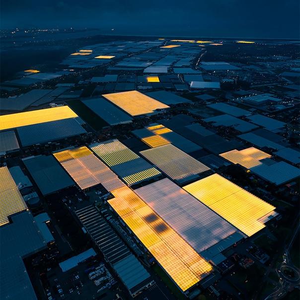 Немецкий фотограф Том Хеген специализируется на аэрофотографии Недавно он совершил путешествие в Нидерланды, где сделал серию снимков теплиц, в которых используется LED-освещение. Внутри таких