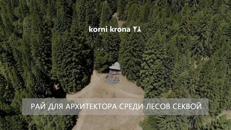 50 Лет автономной работы Рай для архитектора среди лесов Секвой северной Калифорнии
