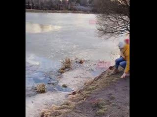 Молодая мама двух детей героически спасла провалившуюся под лёд собаку