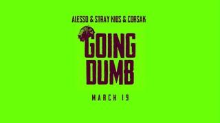 [210318] STRAY KIDS x ALESSO & CORSAK TWITTER VIDEO (GOING DUMB TEASER)