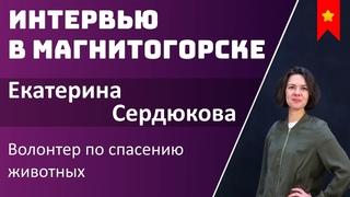 Екатерина Сердюкова - волонтер по спасению животных