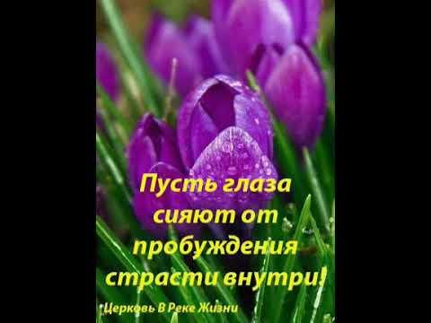 Откровение Радочки Закон Духа Жизни 16 05 2020 Старший пастор Людмила Мастерова