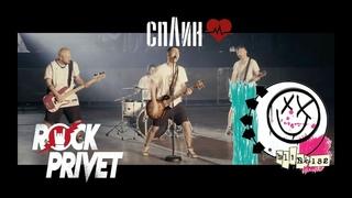 Cплин /  Blink-182 - Моё Сердце(Cover by ROCK PRIVET)