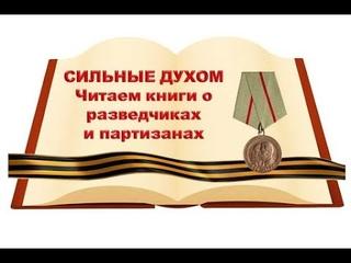 Дмитрий Гусаров «Боевой призыв»  Книга 2  «Скрытая борьба»  Глава 11 читает отец Константин Савандер