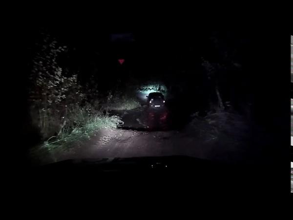 В Удмуртии инспекторы ДПС применили табельное оружие для остановки автомобиля