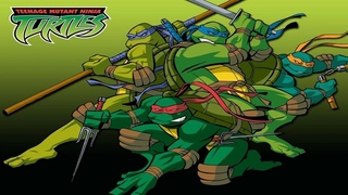 TMNT 2003 Theme Song 10 Hours Extended