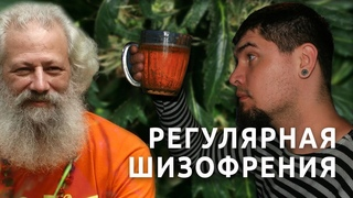 Дмитрий Гайдук | Регулярная шизофрения | фильм '2008 | HD