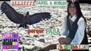 Porque pasa Jeanette Daniel A Robles Porqué te vas el Condor pasa Mashup by the rubbeats