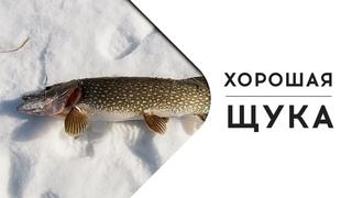 ОЙ БЛ... =))) ХОРОШАЯ ЩУКА !!! (рыбалка щуки на жерлицы зимой)