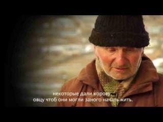 Геноцид ингушского народа. Отношение грузин и осетин к ингушами.