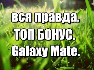 Дима Компаниец | Топ бонус в Galaxy Mate