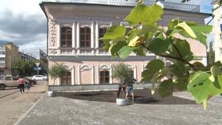 Завершается строительство современного сквера в центре Шадринска (2021-07-28)