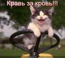 Фотоальбом Василия Хлебникова
