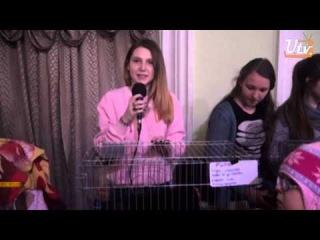News4u Турнир по плаванию Открытие катка Выставка-раздача животных
