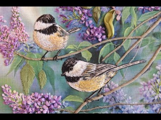 [Курс Синички] Урок 19. Утяжка Птичек