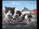 Welcome to Kitty City by Cyriak (30 minutes version)