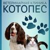 Ветеринарные клиники КОТОПЁС в Саратове