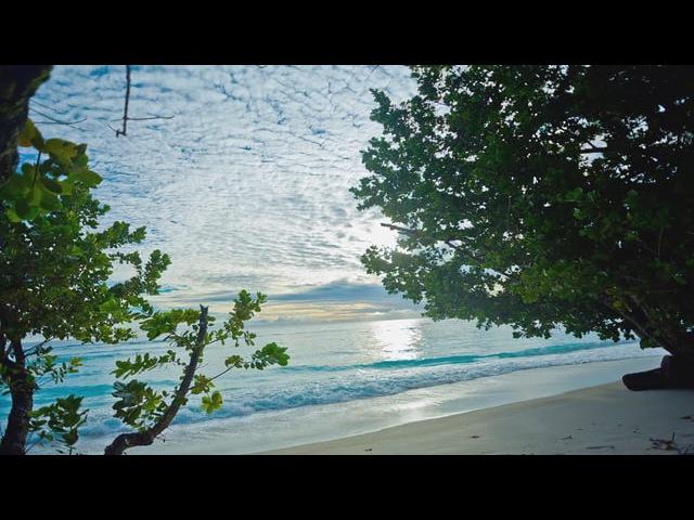 Sunrice sunset sea grishkoffilmpro