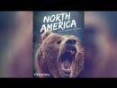 Discovery Северная Америка 2013 North America