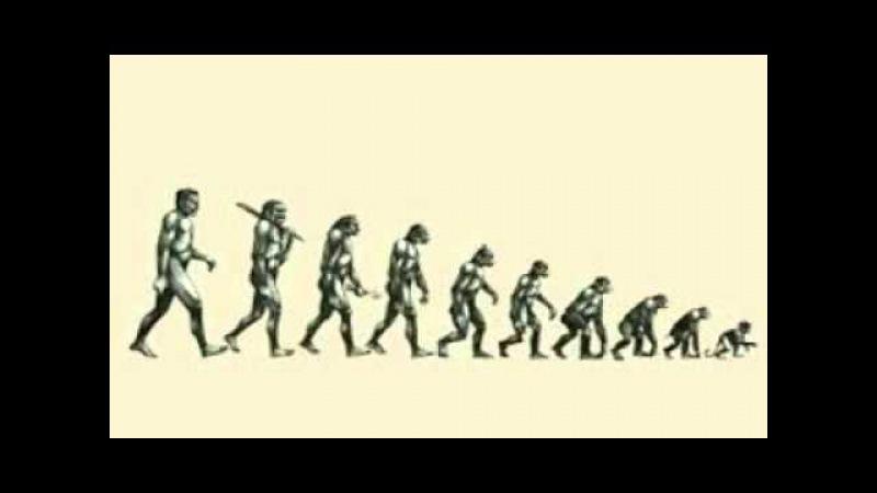 Инволюция человека Тушкин