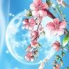 АСТРОЛЯРИЯ: астрология для жизни