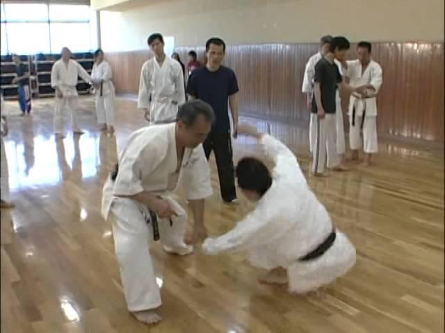 Gekisai Dai Ichi _ Goju ryu _ Kata no ura bunkai _ Yoshio Kuba