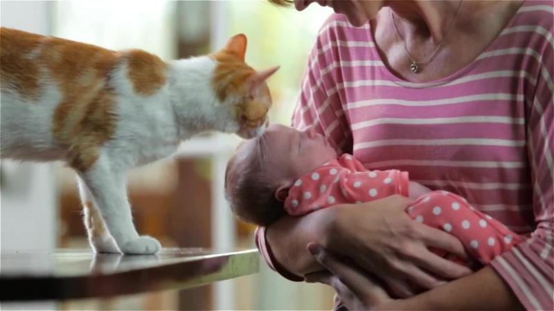 Гифка мама малыш