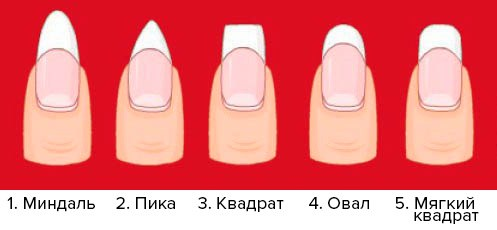 зависимости какие формы ногтей бывают при наращивание фото под