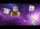 15 min PonPonPon Cat