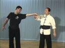 Рычаг пацев с Ч1 по Ч13 Tai Chi Ch'uan Martial Art armlock уроки тай чи Болевые приемы
